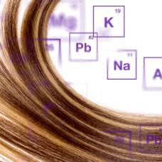 Hair Heavy Metals & Mineral Balance Analysis